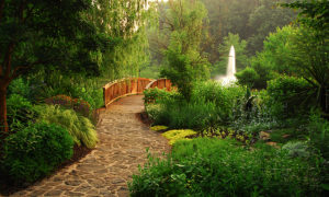 DP Meadowlark Bridge & Fountain16