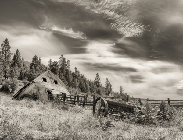 Class 2 Digital - Lynn Cates – Cowering Before the Storm