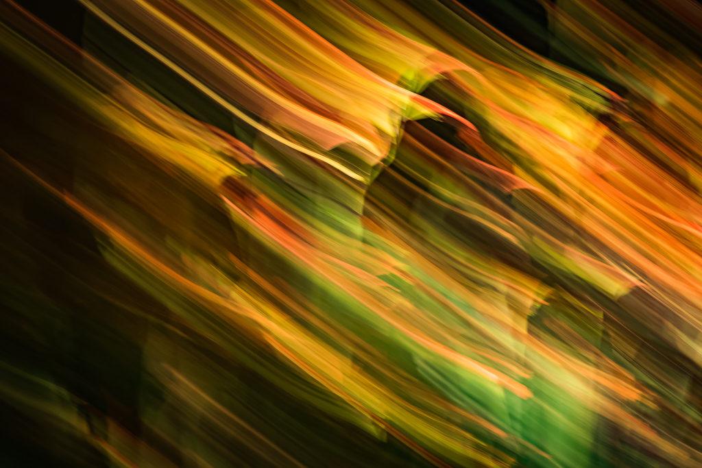 Abstract4-1-1024x683.jpg