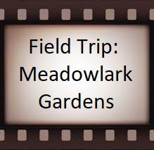 Field-Trip-Meadowlark-12-19.png