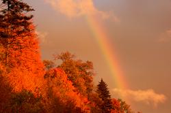 Evening Rainbow - Patricia Deege